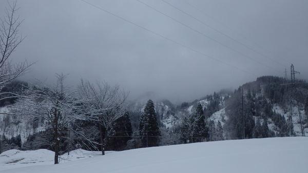 積雪150408- (1).JPGのサムネイル画像