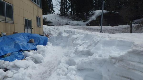 除雪150416-4.JPGのサムネイル画像