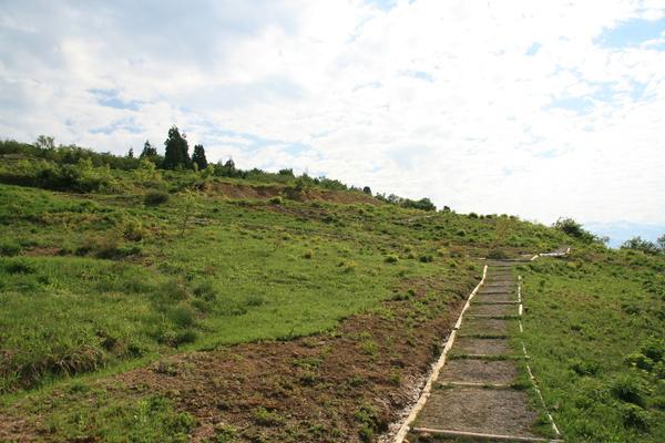 植物園150525- (5).JPGのサムネイル画像
