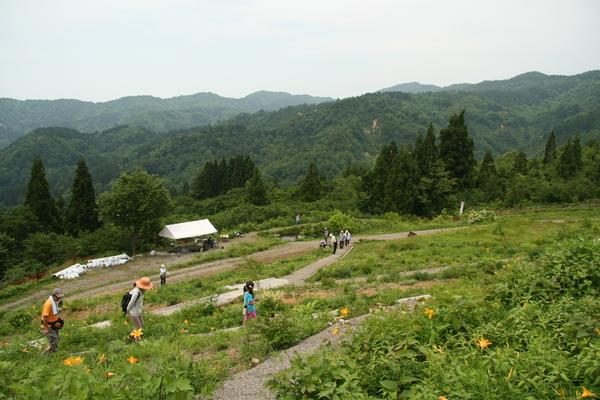植物園1日目150613- (13).JPG