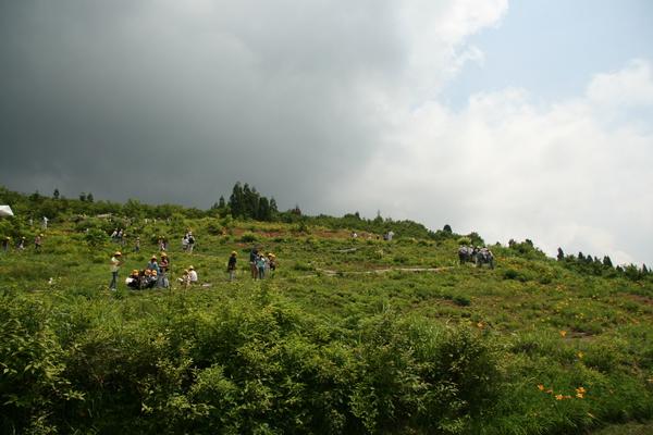 植物園4日目150617- (18).JPG
