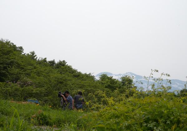 garden606.jpg